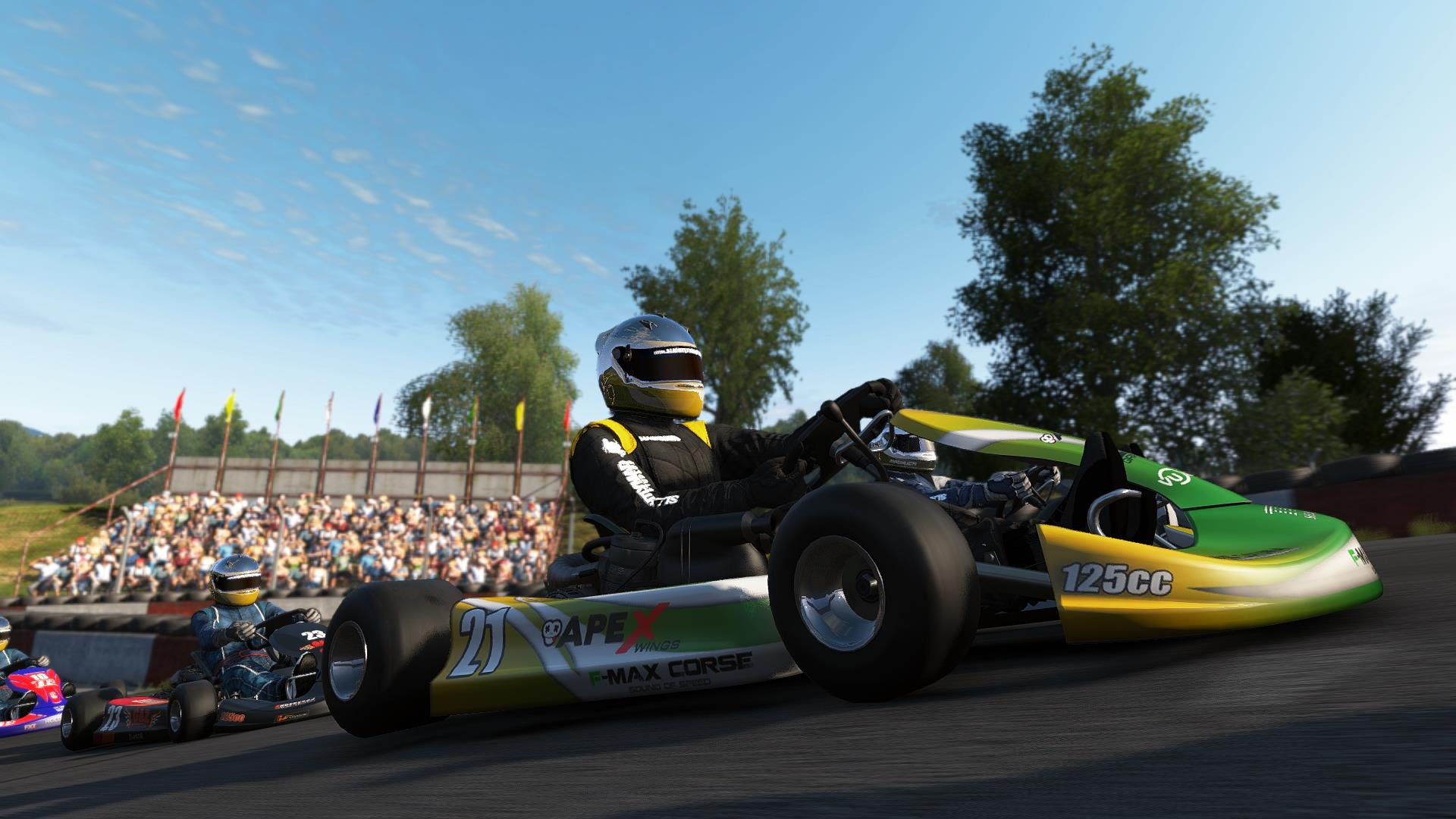 Project Cars Screens Are All About Karting