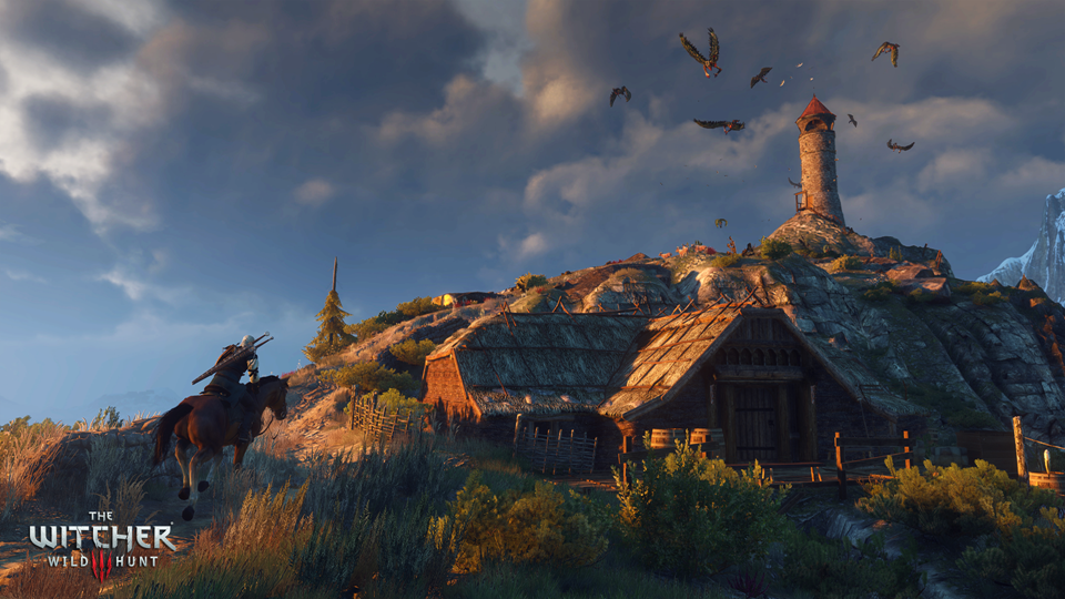 The_Witcher_3_Wild_Hunt_Dona€™t_feed_the_birds--it_only_encourages_them (Copy)