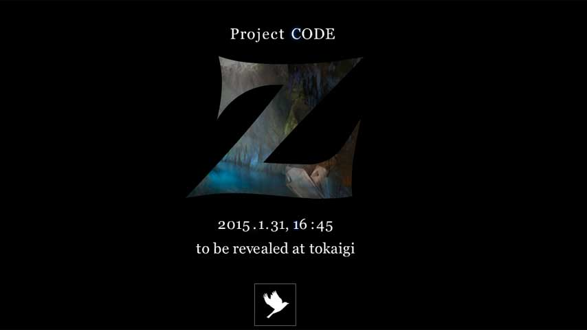 project_code_z