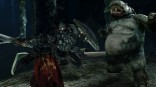 dark_souls_2_scholar_of_the_first_sin (5)