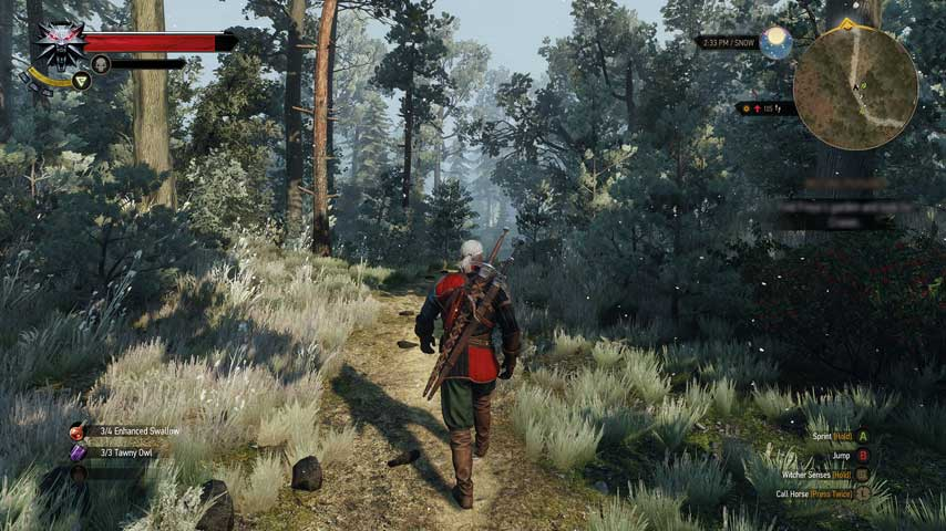 the_witcher_3_wild_hunt_review_screens_18