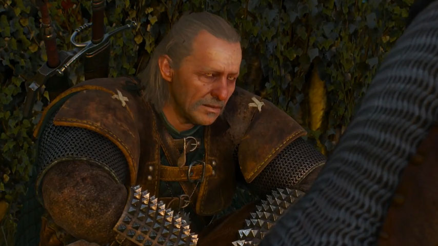 Witcher 3 All Endings