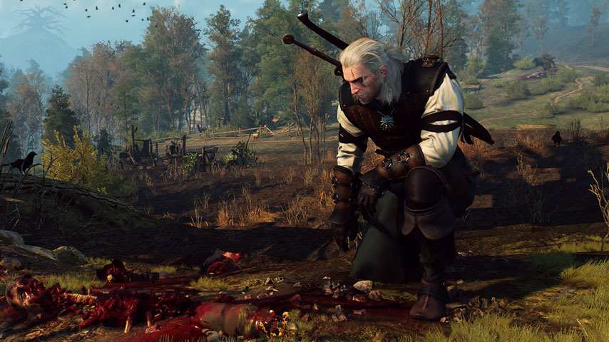 the_witcher_3_wild_hunt_walkthrough_10_hunting_a_witch