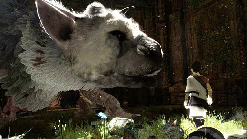 The Last Guardian is a video game about bonding with an animal, so let's all watch some cute animals for a bit