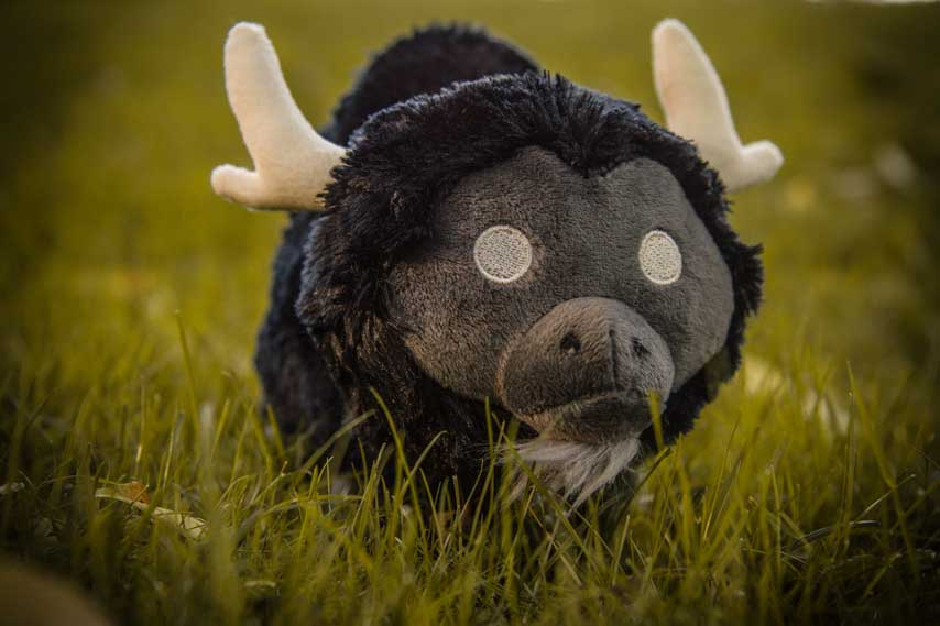 dont_starve_plushie_shadow_beefalo