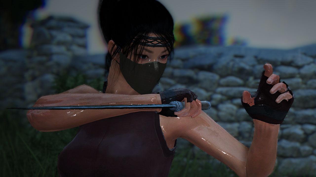 black desert online ninja kunoichi
