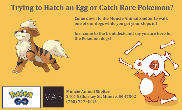 muncie_animal_shelter_pokemon_go