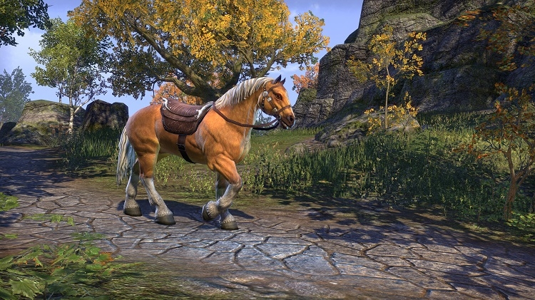 the_elder_scrolls_online_gold_edition_palomino_mount