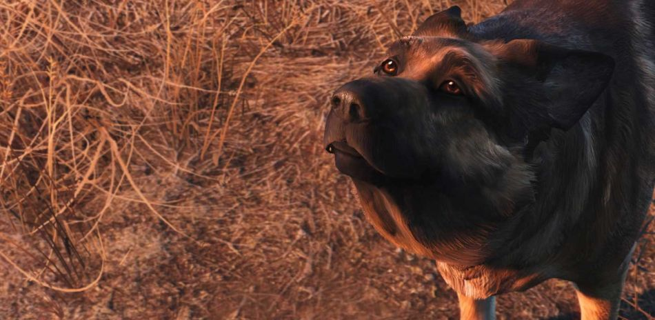 Fallout 4's latest update containing support for Nuka-World