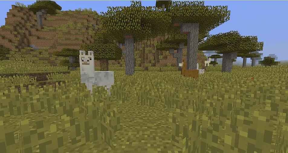 minecraft_llamas