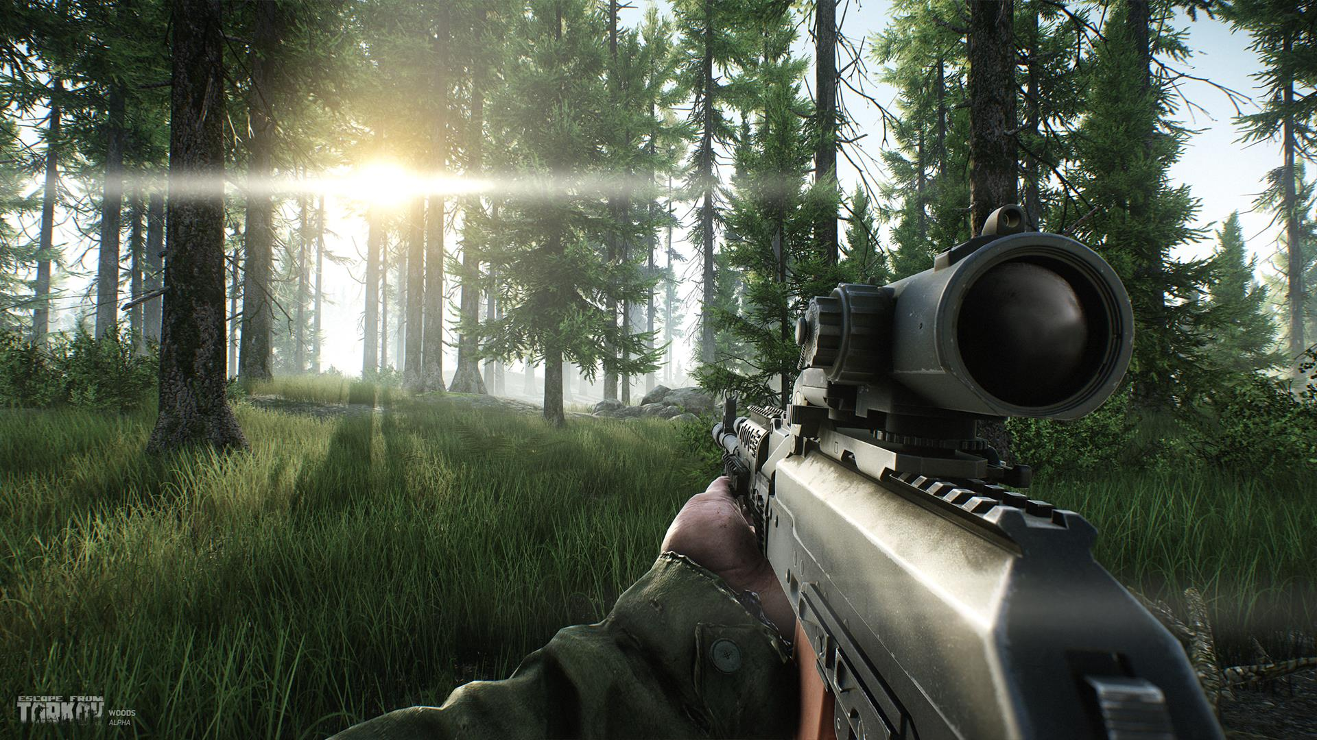 Escape from Tarkov new screens show the Forest - VG247