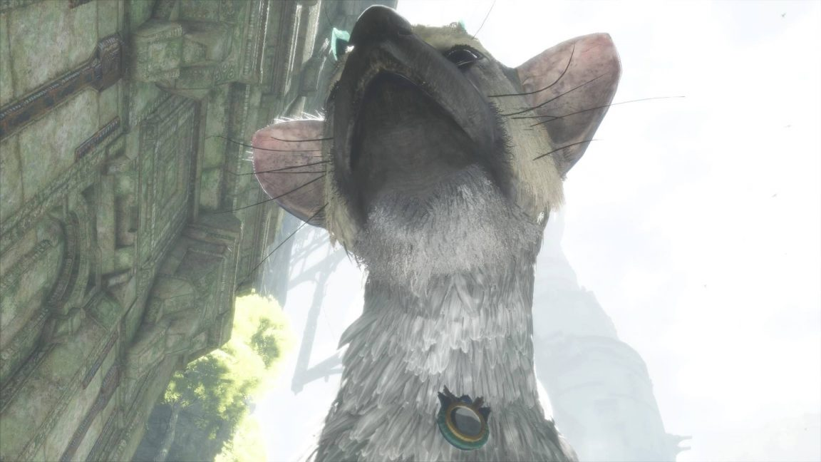 last_guardian_trico_with_medal