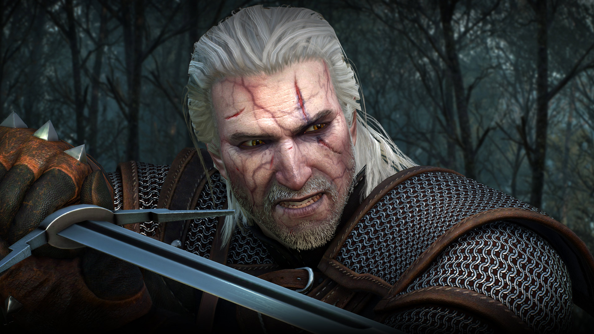 the_witcher_3_gerlat_is_not_amused
