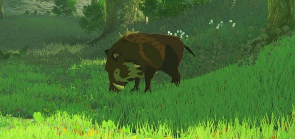 zelda- breath-of-the-wild-boar