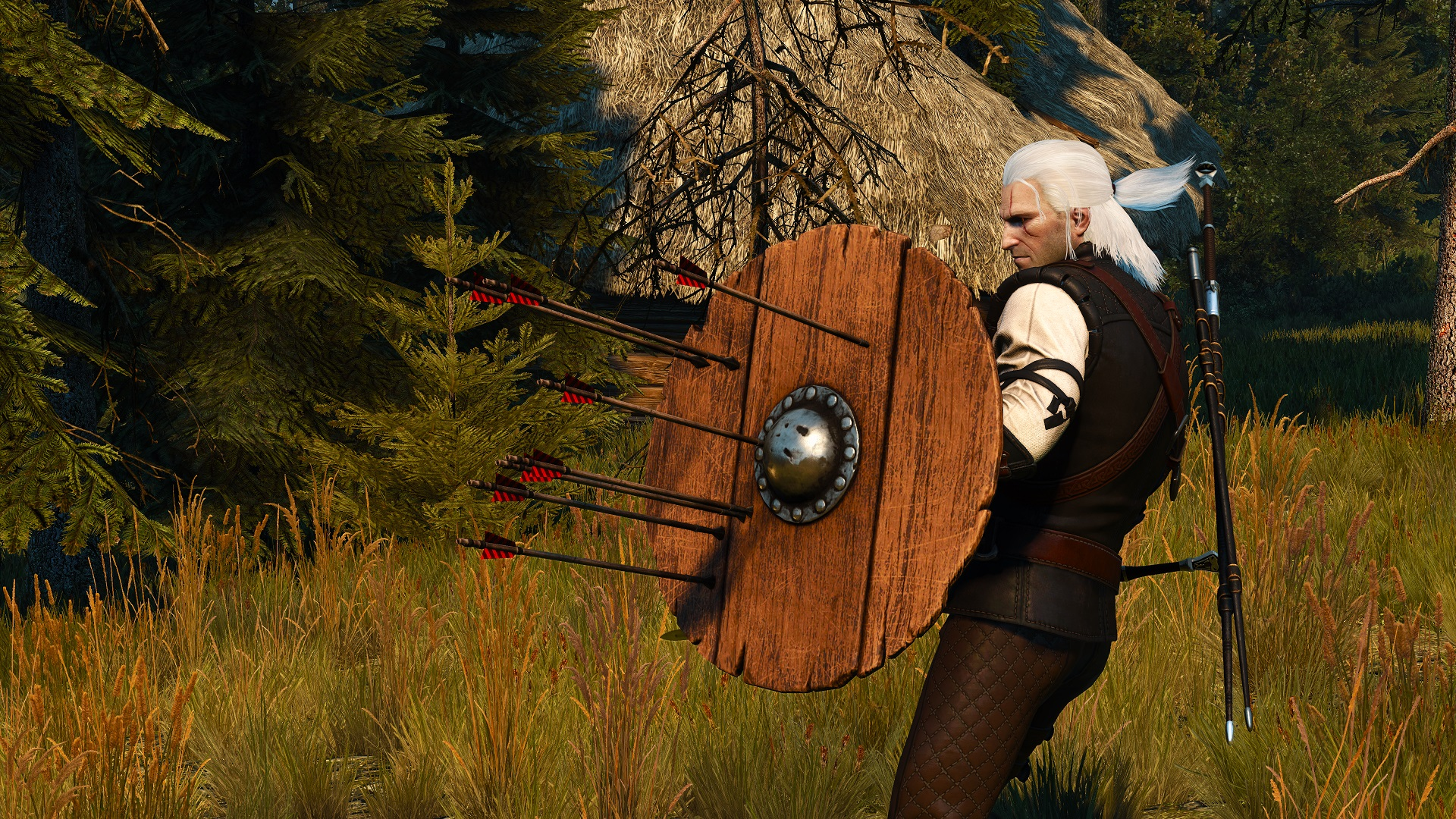 This Witcher 3 mod gives Geralt a shield - VG247