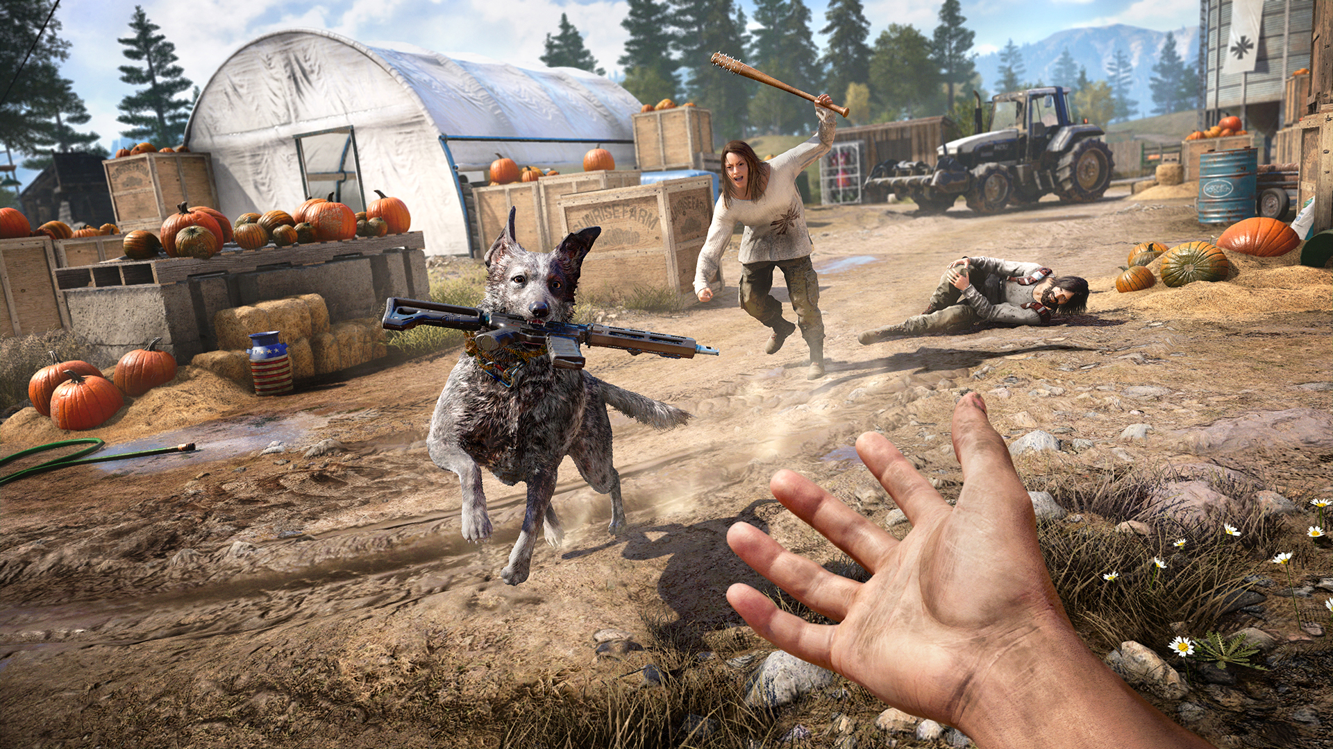 The Dog In Far Cry 5 Cannot Die But It Can Get Hurt So Please Still Be Careful With This Very Good Boy Vg247