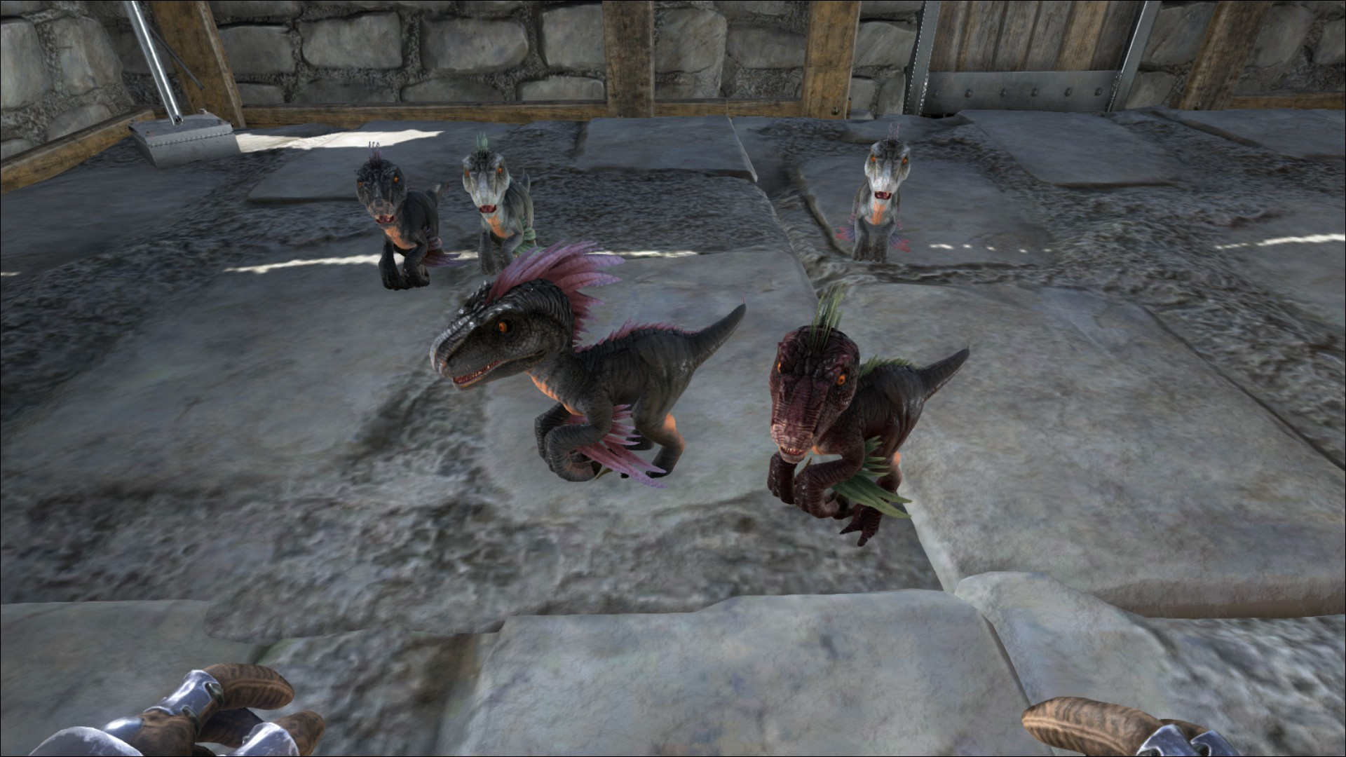 ark survival evolved breeding