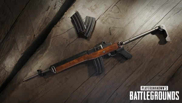 battlegrounds_mini_14_rifle_1