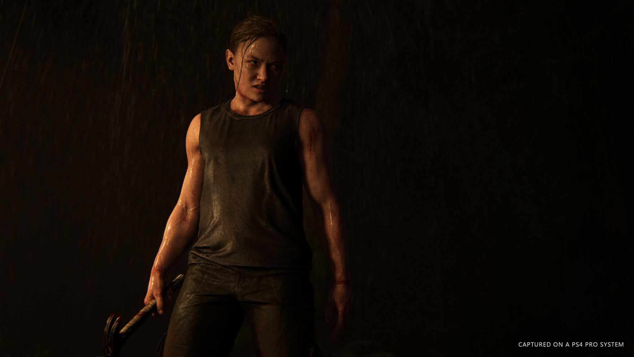 「The Last of Us Part II」の画像検索結果