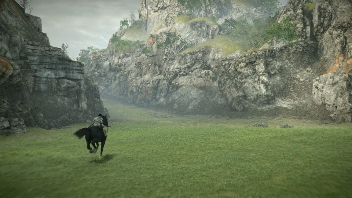SHADOW OF THE COLOSSUS™_20180131144734