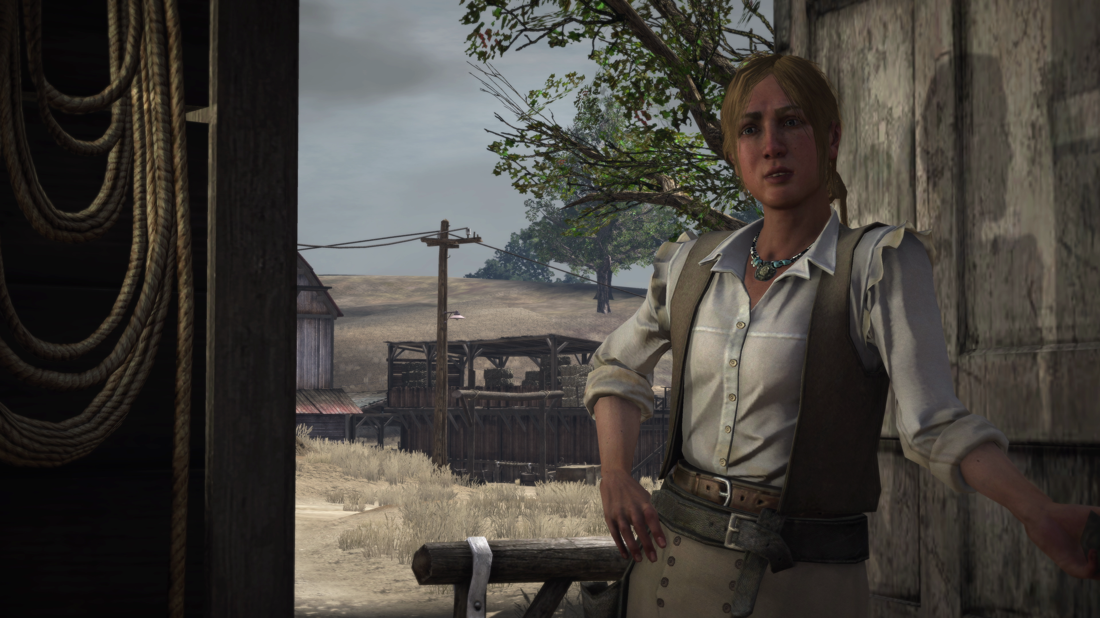 Red Dead Redemption looks insane using Xbox One's enhanced backwards