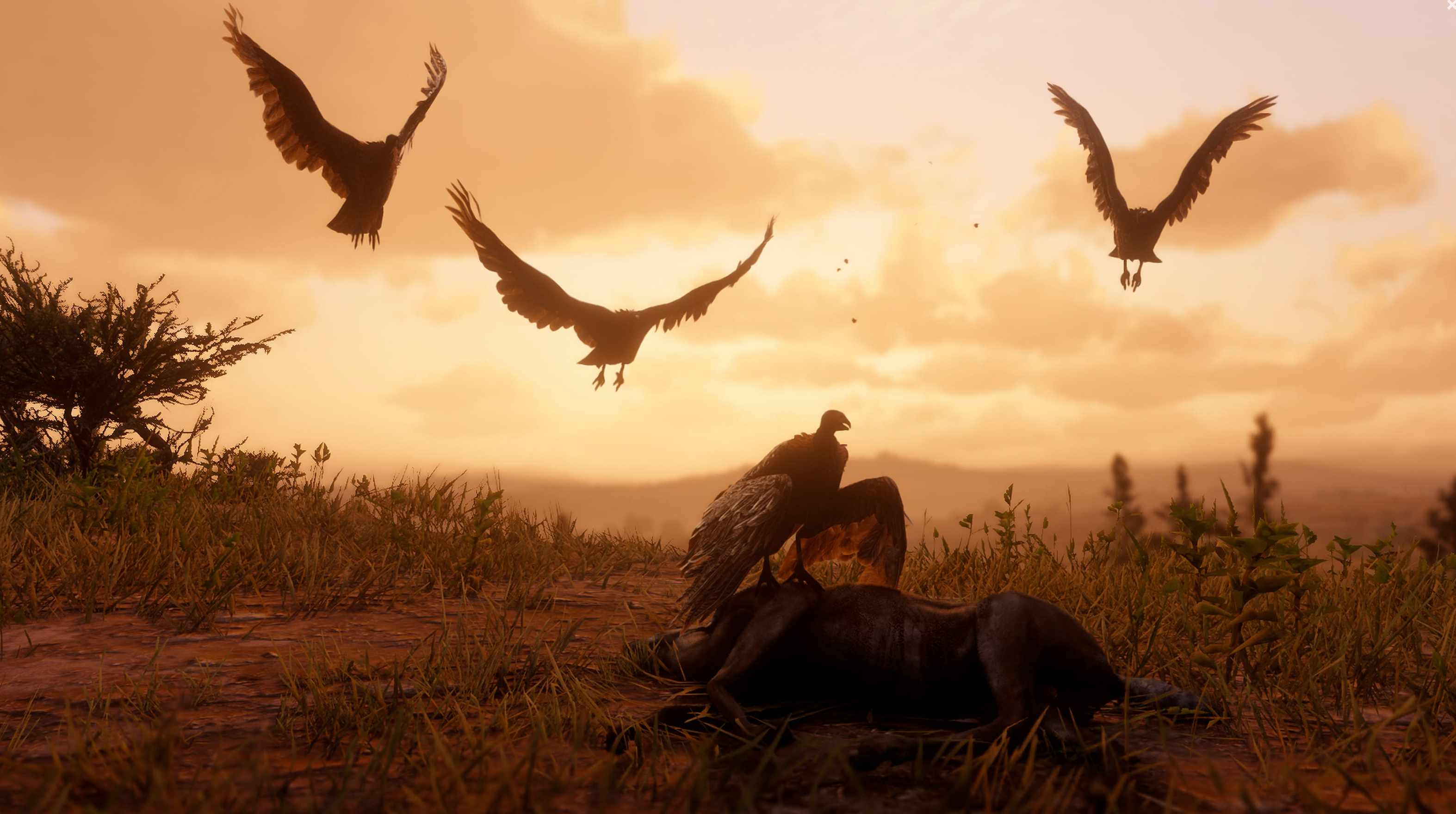 Where is the Red Dead Redemption 2 trapper? Here's how to