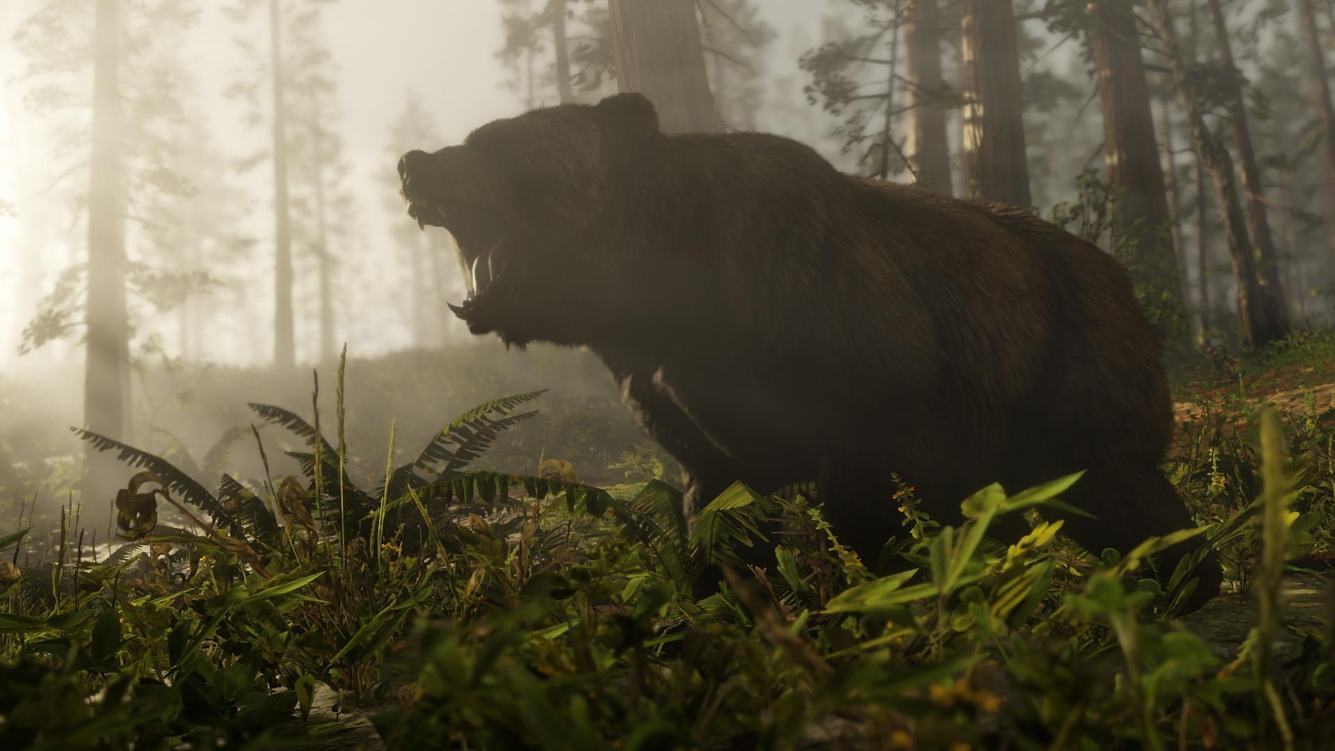 Puedes mirar a los osos para evitar que ataquen en Red Dead Redemption 2 4
