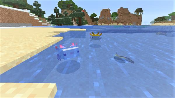 Minecraft Axolotls baby axolotl