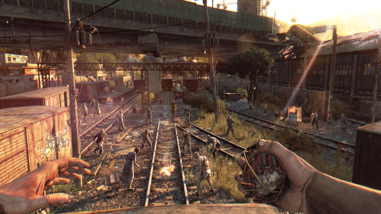 how to play dying light online