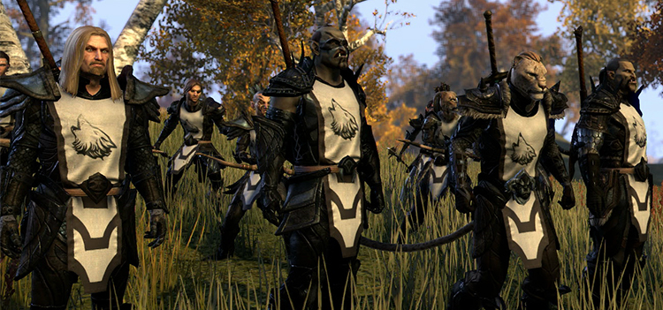 what are the guilds in elder scrolls online