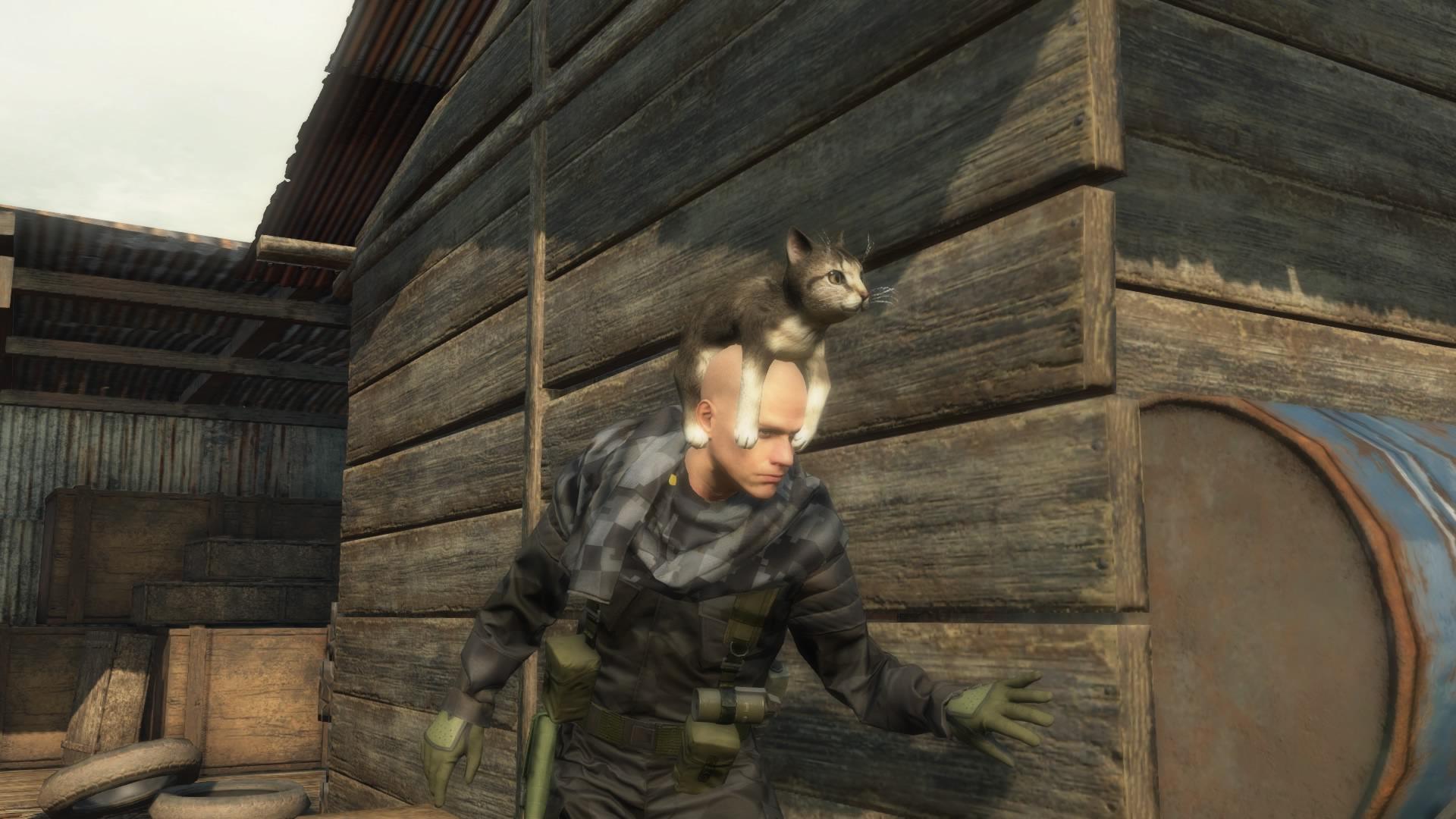 phantom pain как ловить животных