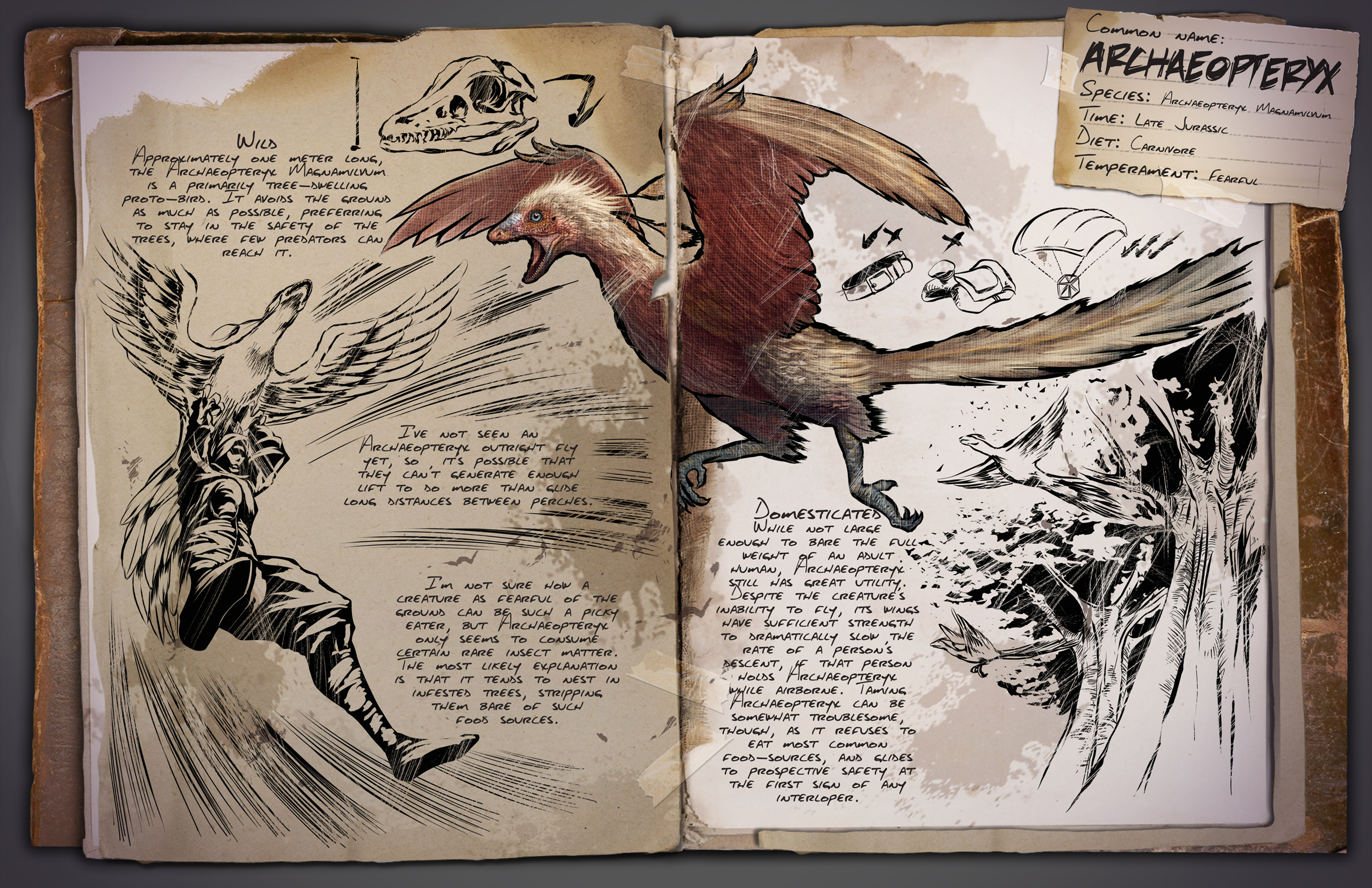 Image Result For Doedicurus Coloring Book